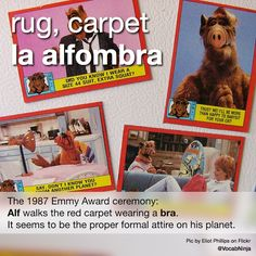 """rug, carpet la alfombra • The 1987 Emmy Award ceremony: Alf walks the red carpet wearing a bra. It seems to be the proper formal attire on his planet. • Imagine a 'green' & 'ecological' carpet made of alfalfa plants. """" The carpet is red. La alfombra..."""