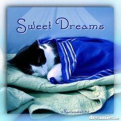 Zzzzzzzz...sweet dreams.