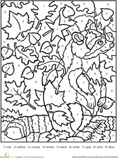 Fall Second Grade Animals Color by Number Worksheets: Color by Number Raccoon