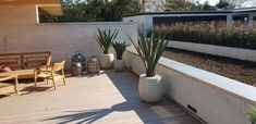 Patio, Outdoor Decor, Inspiration, Home Decor, Environment, Cypress Trees, Agaves, Planting, Weather
