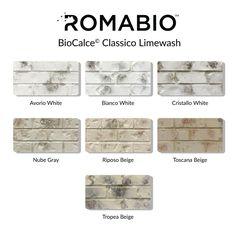 ROMABIO 0.67 gal. Nube Gray Limewash Interior/Exterior Paint-1012E4 - The Home Depot House Paint Exterior, Exterior Paint Colors, Exterior House Colors, Interior Exterior, White Wash Brick Exterior, Stained Brick Exterior, Building Exterior, Interior Trim, Whitewashing Exterior Brick
