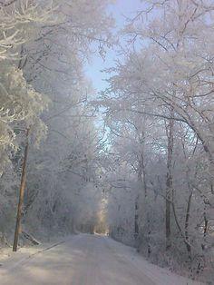 est Tn winter, beautiful