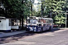 Arnhem 1977 trolleybus bij Burgers Zoo