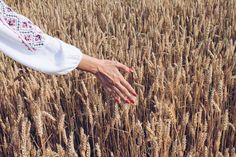 #wheat #nails #rednails #hand #nature #ie #romania #travel Romania Travel, Red Nails, Random, Nature, Inspiration, Red Toenails, Biblical Inspiration, Red Nail, The Great Outdoors