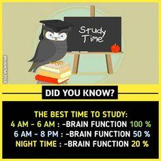 Tabi mere kam reh gye 90 aane m bcz night tym pe study krti thi.na 🤔🤔🤔🤔 Wierd Facts, Wow Facts, Intresting Facts, Real Facts, Funny Facts, Interesting Science Facts, Amazing Science Facts, Interesting Facts About World, Random Science Facts