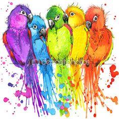 Футболка графика красочные попугаи, Иллюстрация акварель — стоковое изображение #74597061