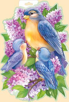 Империя Поздравлений - - Pretty Birds, Beautiful Birds, Watercolor Bird, Watercolor Paintings, Decoupage Vintage, Bird Drawings, Bird Pictures, Fabric Painting, Bird Art