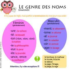 Le genre des noms, très important Basic French Words, French Phrases, How To Speak French, Learn French, French Expressions, French Language Lessons, French Language Learning, French Lessons, Spanish Lessons