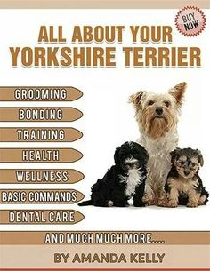 Book for your Yorkie