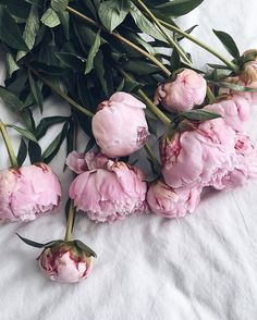 50 Ideas flowers pink bouquet peonies for 2019