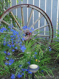 Blue Flowers & Wagon Wheel by Brenda Carson, via Dreamstime