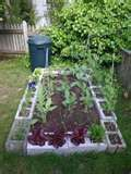 Ideas for Gardening with Cinder Blocks