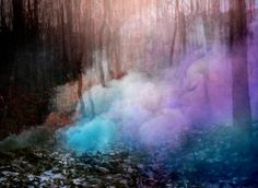 Smoke Bomb - Woodland