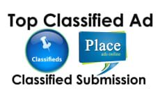 Pin By Ar Citation Builder On Arcitationbuild Public Profile Promote Your Business Classified Ads