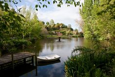 Sanctuary Gardens Napier NZ I want to get married here. Got Married, Getting Married, Long White Cloud, New Zealand North, Next Holiday, Future Travel, Homeland, Birth, Things I Want
