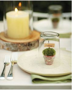 Create a charming tablescape with mini terrarium placecards on each plate. I love the wood pieces with candles, too!