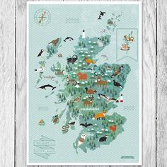 wildlife map of scotland print by finch and robin | notonthehighstreet.com