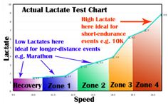 Actual Lactate Testing Chart