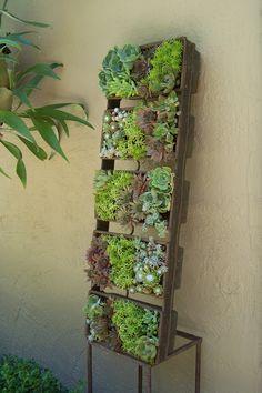 A vertical succulent planter using an industrial bread pan. Kim Pearson Designs