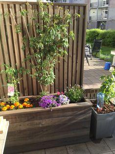 Gjør det selv – blomsterkasse i Sibirsk Lerk med selvvanning – Gjør det selv Planters, Wood, Garden, Outdoors, Balconies, Woodworking Projects, Wood Flower Box, Patio, Diy Garden Projects