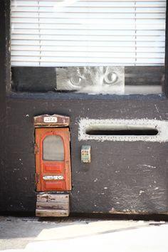 Too cute! Cat door in NYC.