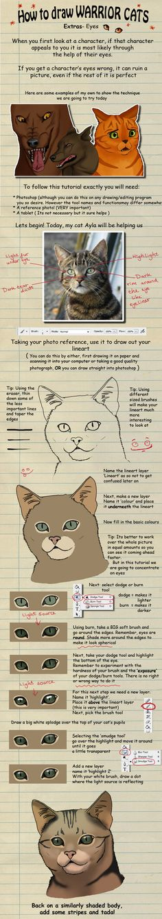 How to draw Warrior Cats eyes by heylorlass on @DeviantArt