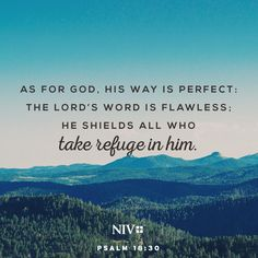 30 As for God, his way is perfect: The Lord's word is flawless; he shields all…