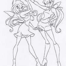 Bloom And Stella The Winx Club Fairies