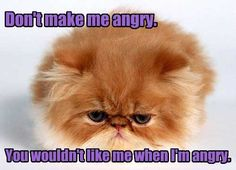 Don't make me angry!