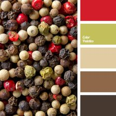 Colors of Indian peppers mix are embodied in this palette. Soft color of white pepper is in a winning combination with red and brownish-black colors. Light green hue brings freshness to the heating spice mixture. Good color solution for large family's room with fireplace.