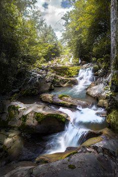 Mid Day Forest Riverflow by Luis Lyons on Landscape Photos, Landscape Art, Landscape Paintings, Landscape Photography, Nature Photography, All Nature, Amazing Nature, Beautiful Waterfalls, Beautiful Landscapes