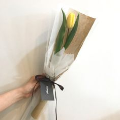 ✿*· pinterest ⇢ kimmiecla Single Flower Bouquet, Flower Bouqet, Tulip Bouquet, Bouquet Wrap, Hand Bouquet, How To Wrap Flowers, Beautiful Flowers, Chocolate Flowers Bouquet, Flower Packaging