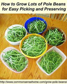 Why Pole Beans are Better Than Bush Beans. Pole Bean Planting Basics. Best Varieties to Plant. Boosting production and trellising for easy p...