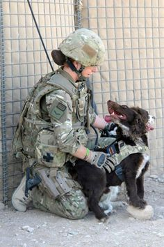 Service dog and handler in Afghanistan.