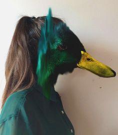 Human duck hybrid based on Charlotte Caron's work Face Collage, Collage Art, Charlotte Caron, Metamorphosis Art, Hybrid Art, Animal Symbolism, Art Diary, Power Animal, A Level Art