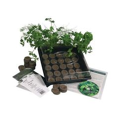 Herb garden starter kit - We've got suggestions for nearly everyone on your list (OK, you might want to snag one or two for yourself), and at $50 or less they won't break the bank. And of course, every gift idea that made it to the list is healthy.