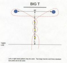 BigT - funny this is a speed/agility test for sport. Great exerice for barrel racing...I use these patterns to improve my barrel horses speed/agility/power and endurance. Being a personal trainet has its perks!