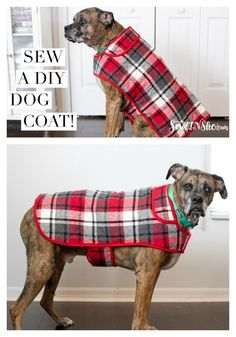 Dog Clothes Patterns, Sewing Patterns Free, Free Sewing, Pre Quilted Fabric, Baby Coat, Dog Pattern, Dog Coat Pattern Sewing, Dog Jacket, Dog Sweaters