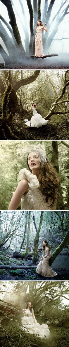 "I believe I will have to have a ""Fairy Tale"" shoot in my wedding gown :)"