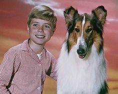 lassie | Filmhund Lassie mit seinem Freund Timmy, gespielt von Jon Provost ... *22