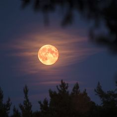 If you thought the Super Worm Moon in March was impressive, wait until you see April's Super Pink Moon—the biggest and brightest moon of the year. Here's everything you need to know about the first full moon of spring. Full Moon Pictures, Moon Photos, Night Sky Photos, The Sky Tonight, Moon Photography, Pink Moon, Night Aesthetic, Super Moon, Beautiful Sky