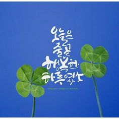 Handwriting, Plant Leaves, Poems, Korea, Profile, Calligraphy, Inspirational, Board, Tips