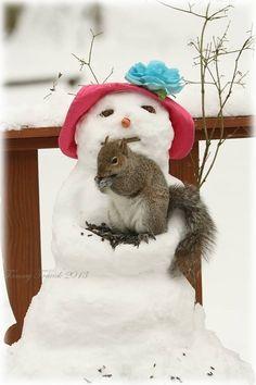 Mon tendre hiver ... - le blog lemanegeenchante