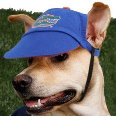 Florida Gators Royal Blue Pet Cap
