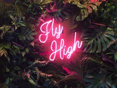 Fly High Neon sign tropical installation #light #installation #neon #sign #quote  #motivational #flyhigh #nature #jungle #plants #tropical #pink