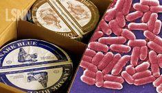 #LSNN Batterio killer in formaggio blu, muore un bimbo nel Regno Unito http://www.ladysilvia.com/it/ladysilvia/24997/salute/0/ #ErringtonCheese #DunsyreBlu #lattecrudo #formaggioBlu #Batteriokiller #RegnoUnito via @ladysilviait