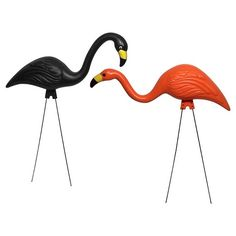 Bloem's 2 Pack Spooky Flamingo. One of the most popular lawn and garden accessories from the 1950s is now available from Bloem. Now your home can feature this icon of Ghoulish Fun. These Spooky Flamingos are made from the highest quality plastic for all-weather durability. The color will not fade and the galvanized steel legs will not rust, so these Spooky Flamingos will look good year after year. Two classic poses are included: head up (27 inch) and head down (24 inch). G8 Flamingo f...