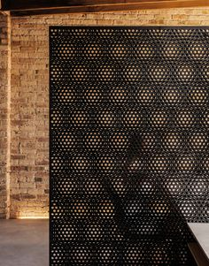 vladimir radutny architects / double perf screening at ranquist development office, chigago