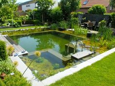 What can a square backyard do? House a phenomenal place to swim! This shot of a backyard swimming pool by  BioNova Natural Pools  demonstrates how an average yard can be transformed into a living water paradise.