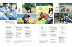 Marketing, Link, Movies, Movie Posters, Elementary Education, Show Jumping, Baby Horses, Range Rover Sport, Diary Book